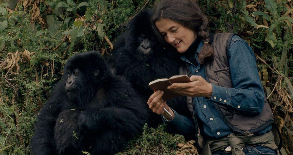 Dian Fossey con gorilas