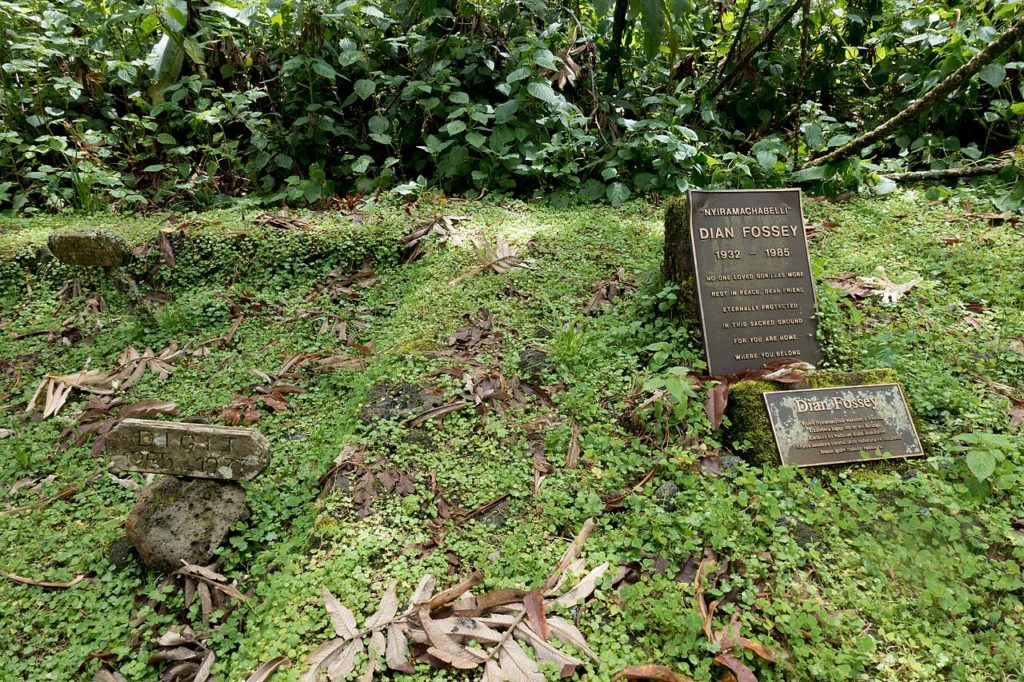 tumba Dian Fossey